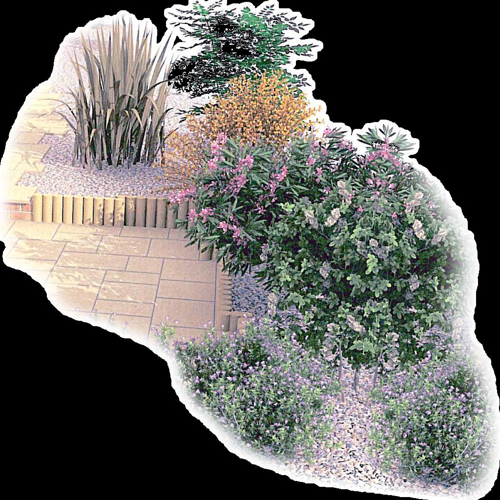 Home norfolk landscapes ltd for Designing a garden from scratch